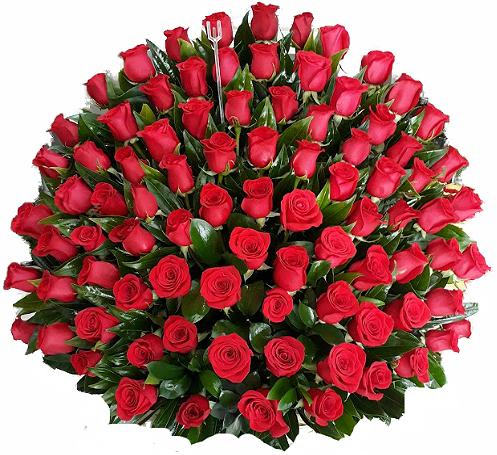 Amores Grandes 72 rosas irania floristeria bogota