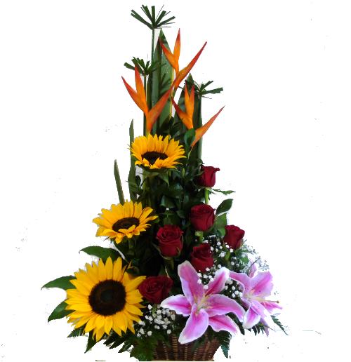 areglos florales con rosas, irania floristeria