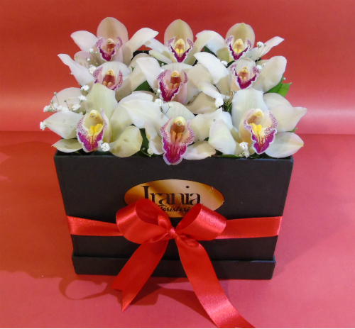 orquideas en caja cubo, iraniafloristeria