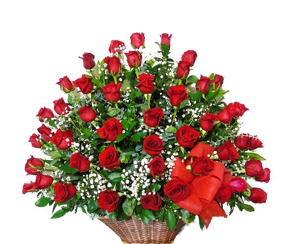 arreglo 48 rosas irania floristeria bogota