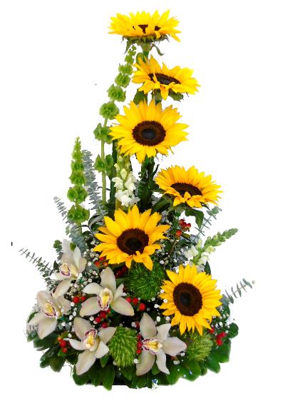 arreglo girasol irania florsteria bogota